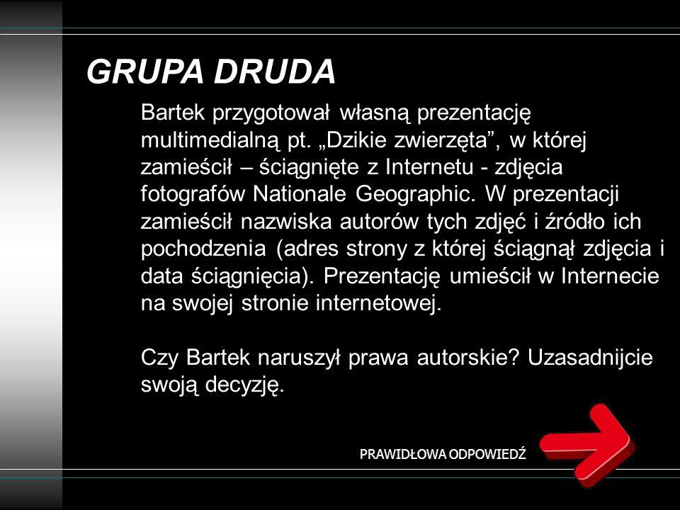 GRUPA DRUDA