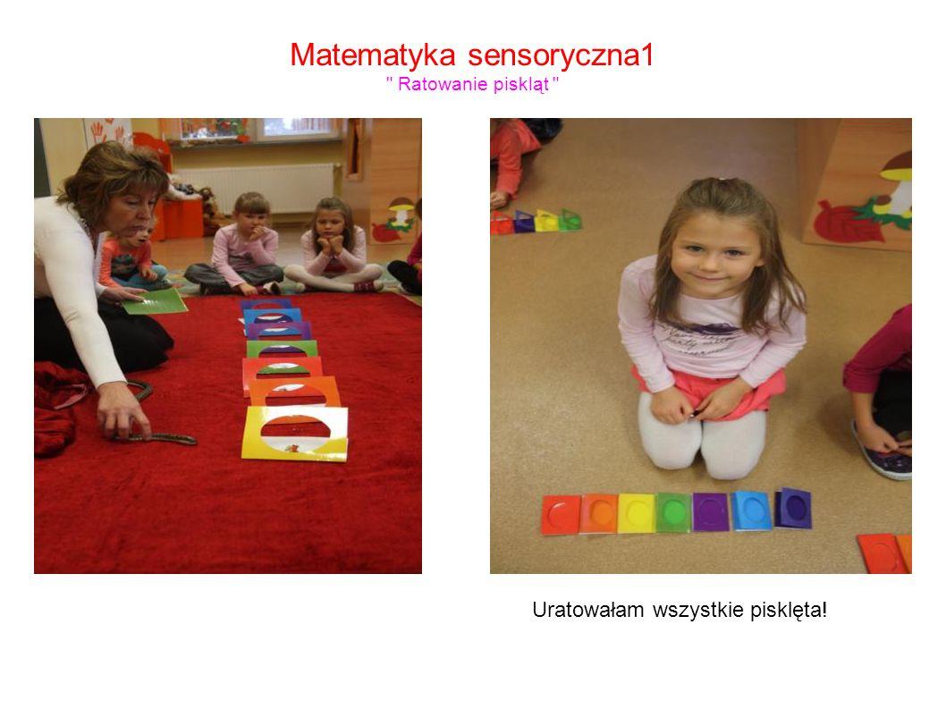 Matematyka sensoryczna1 Ratowanie piskląt