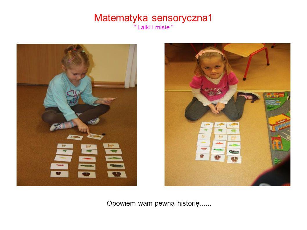 Matematyka sensoryczna1 Lalki i misie