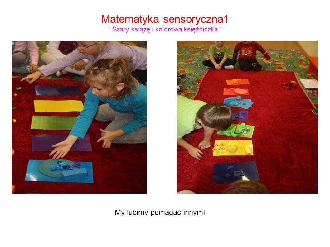 Matematyka sensoryczna1 Szary książę i kolorowa księżniczka