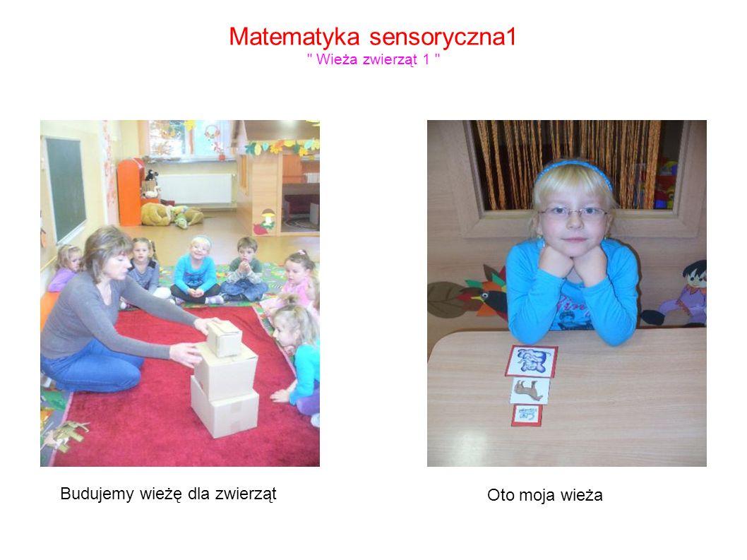 Matematyka sensoryczna1 Wieża zwierząt 1