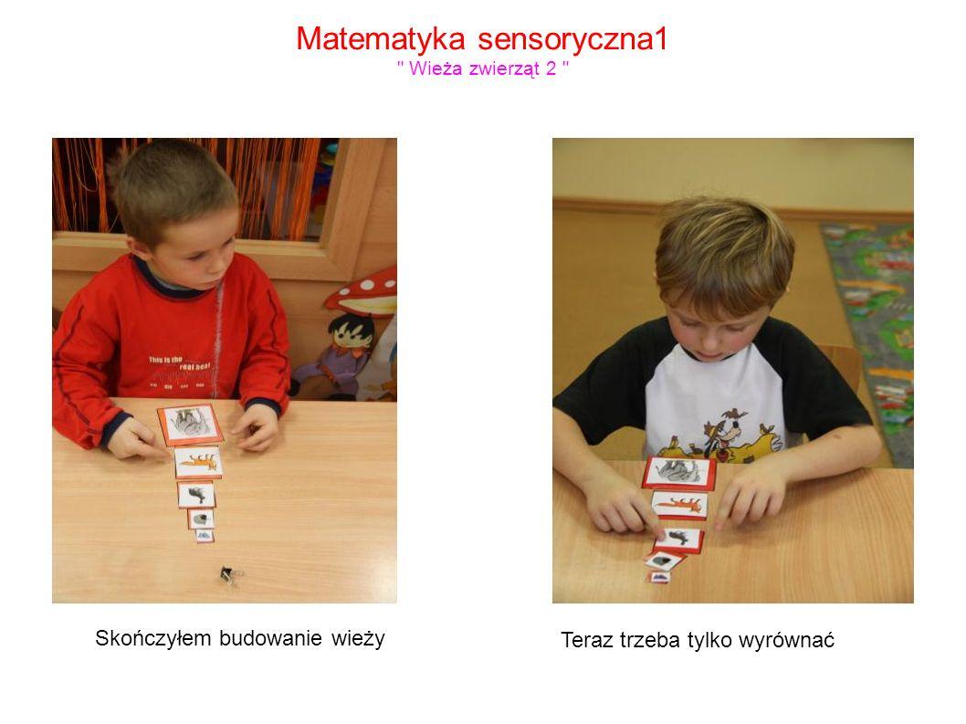 Matematyka sensoryczna1 Wieża zwierząt 2