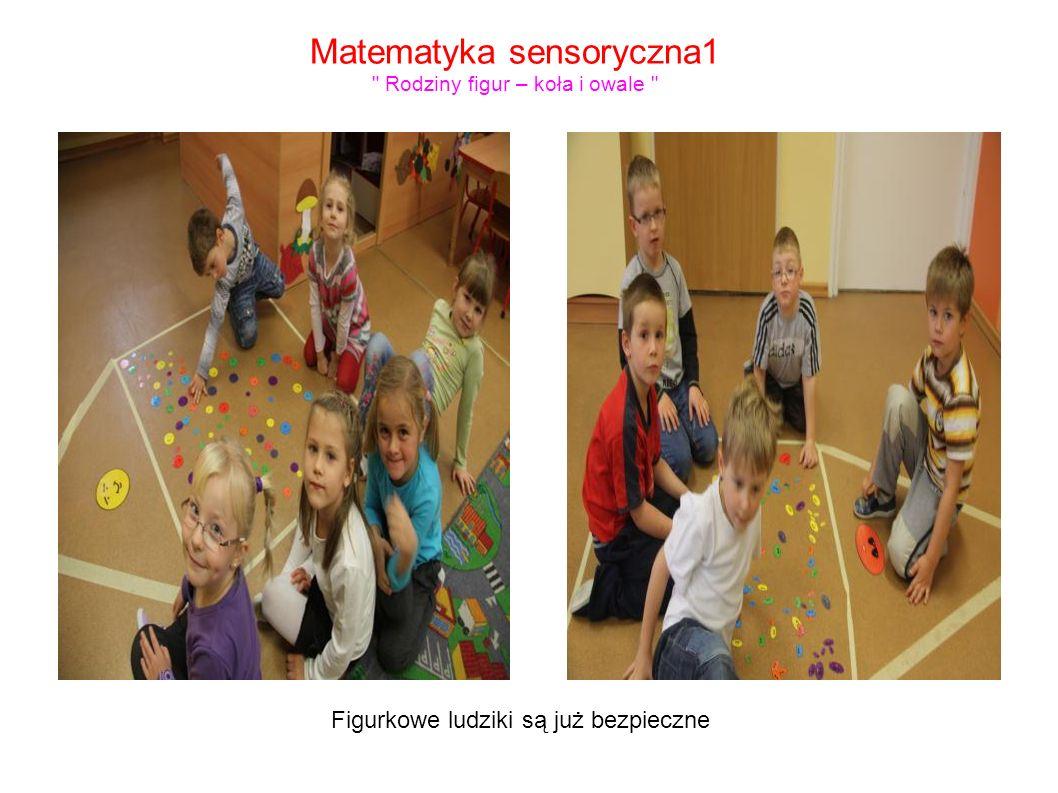 Matematyka sensoryczna1 Rodziny figur – koła i owale