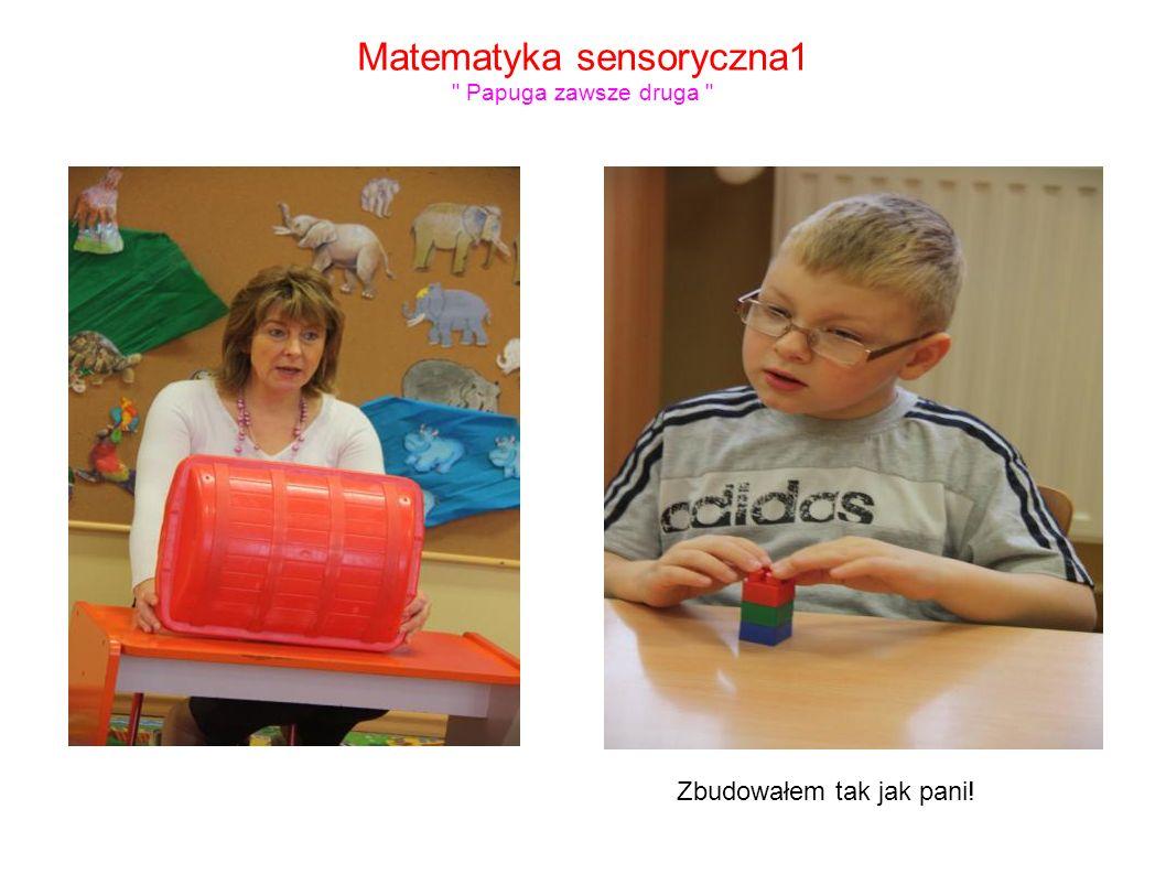 Matematyka sensoryczna1 Papuga zawsze druga