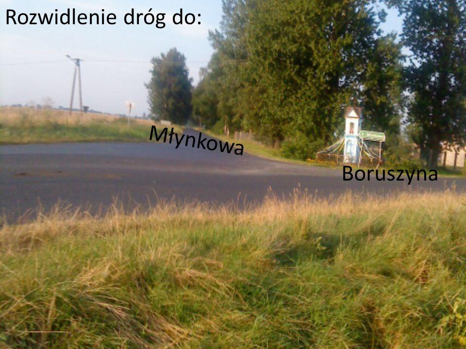 Rozwidlenie dróg do: Młynkowa Boruszyna