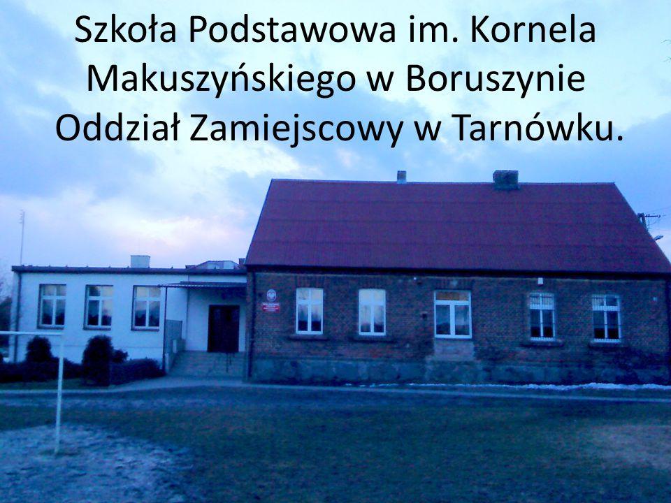 Szkoła Podstawowa im. Kornela Makuszyńskiego w Boruszynie