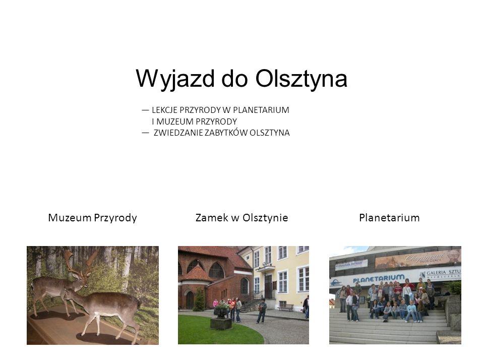 Wyjazd do Olsztyna Muzeum Przyrody Zamek w Olsztynie Planetarium