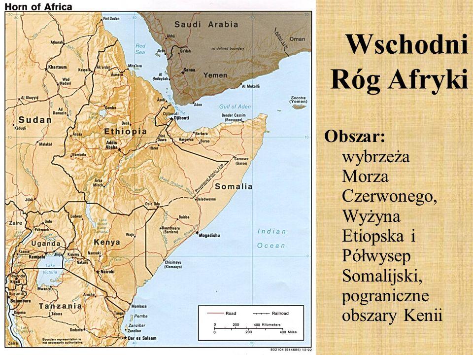 Obszar: wybrzeża Morza Czerwonego, Wyżyna Etiopska i Półwysep Somalijski, pograniczne obszary Kenii