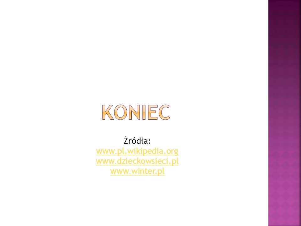 koniec Źródła: www.pl.wikipedia.org www.dzieckowsieci.pl www.winter.pl