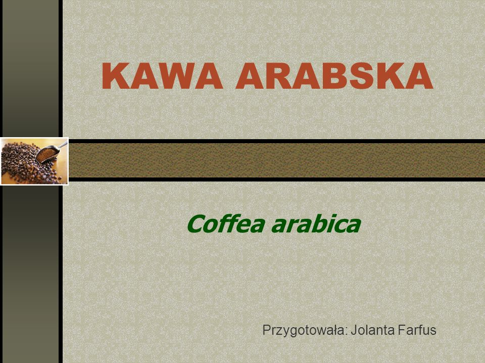 Coffea arabica Przygotowała: Jolanta Farfus