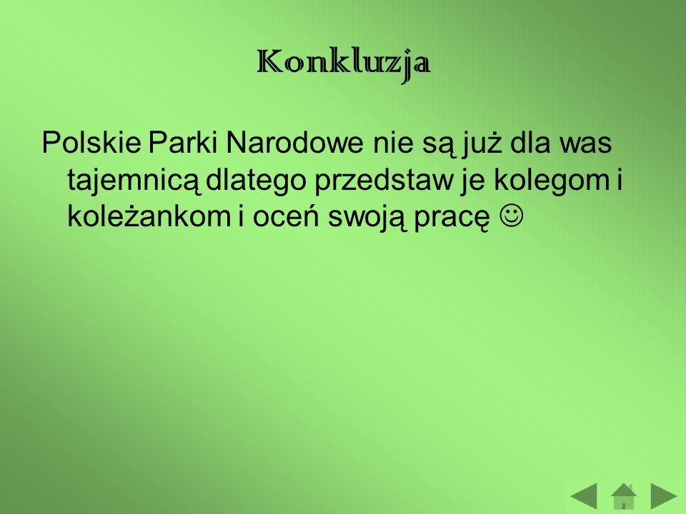 Konkluzja Polskie Parki Narodowe nie są już dla was tajemnicą dlatego przedstaw je kolegom i koleżankom i oceń swoją pracę 