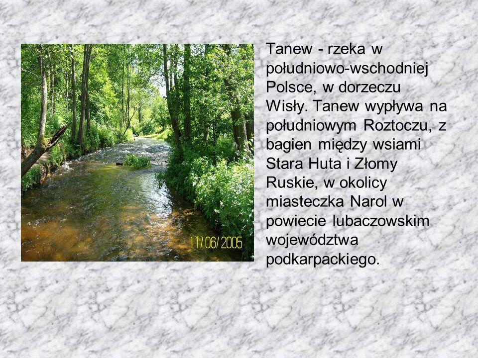 Tanew - rzeka w południowo-wschodniej Polsce, w dorzeczu Wisły