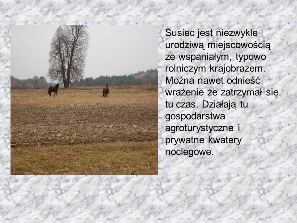 Susiec jest niezwykle urodziwą miejscowością ze wspaniałym, typowo rolniczym krajobrazem.