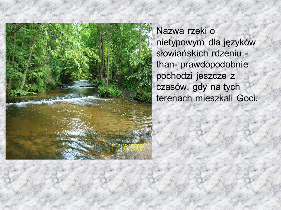 Nazwa rzeki o nietypowym dla języków słowiańskich rdzeniu -than- prawdopodobnie pochodzi jeszcze z czasów, gdy na tych terenach mieszkali Goci.