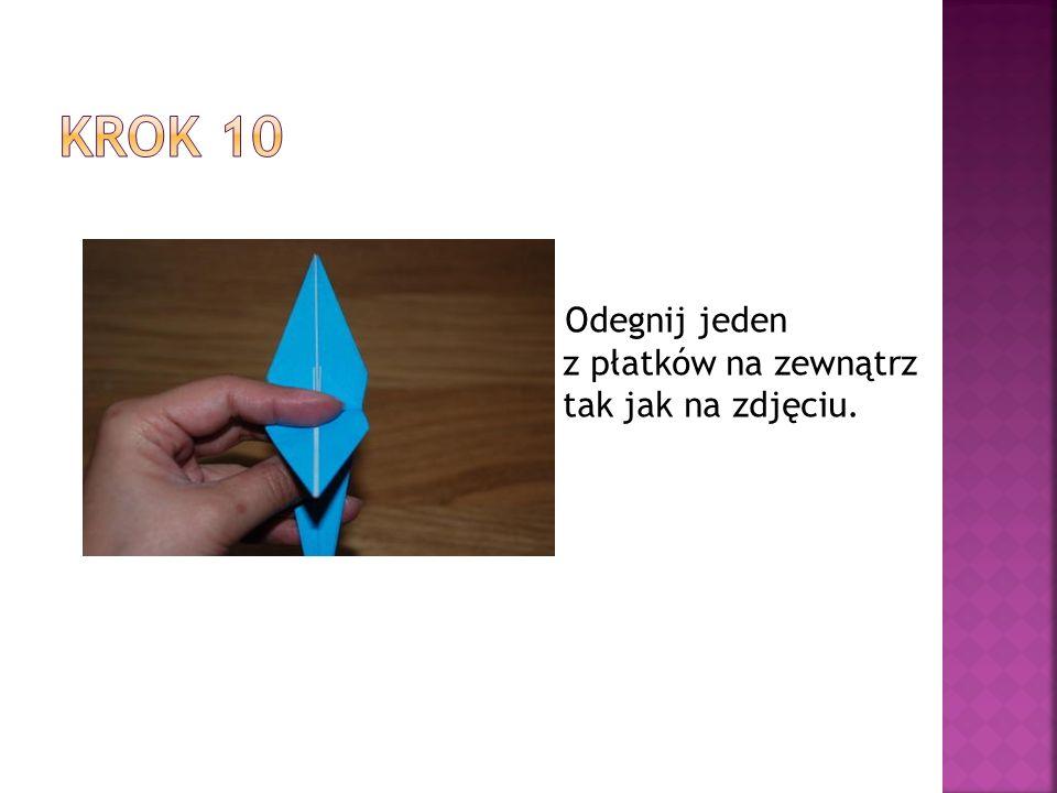 Krok 10 Odegnij jeden z płatków na zewnątrz tak jak na zdjęciu.