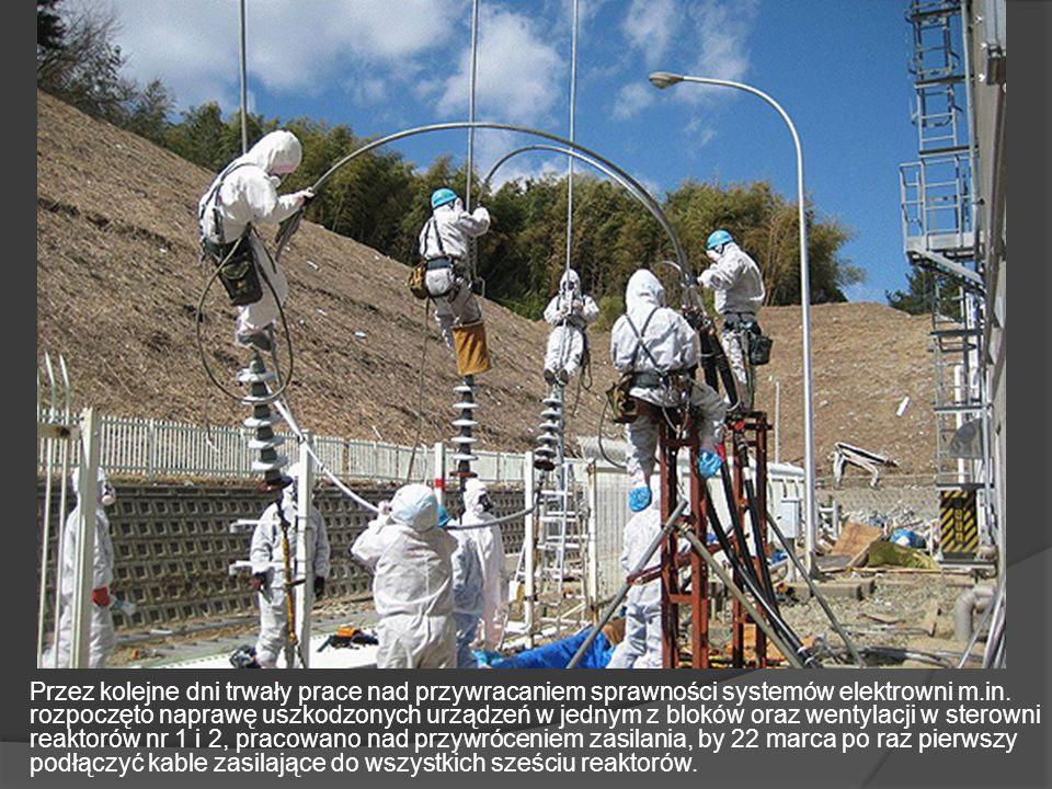 Przez kolejne dni trwały prace nad przywracaniem sprawności systemów elektrowni m.in.