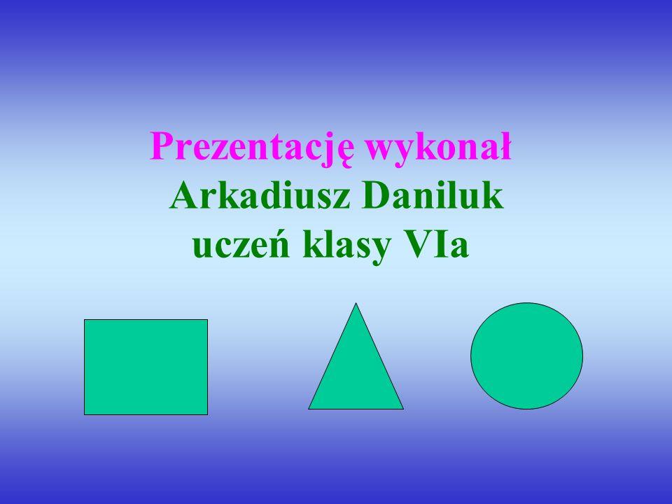 Prezentację wykonał Arkadiusz Daniluk uczeń klasy VIa