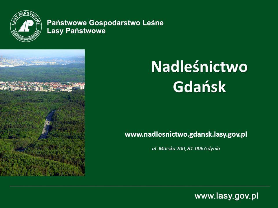 Nadleśnictwo Gdańsk www.nadlesnictwo.gdansk.lasy.gov.pl