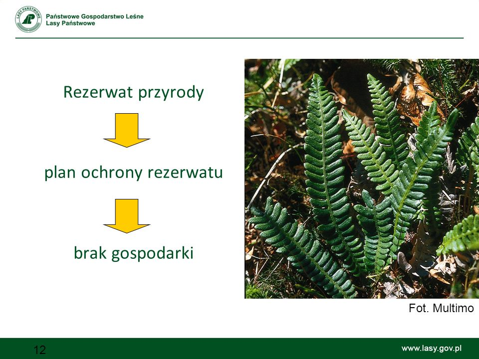 plan ochrony rezerwatu