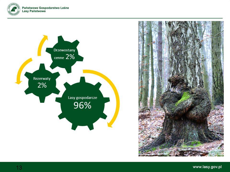 Lasy gospodarcze 96% Rezerwaty 2% Drzewostany cenne 2%