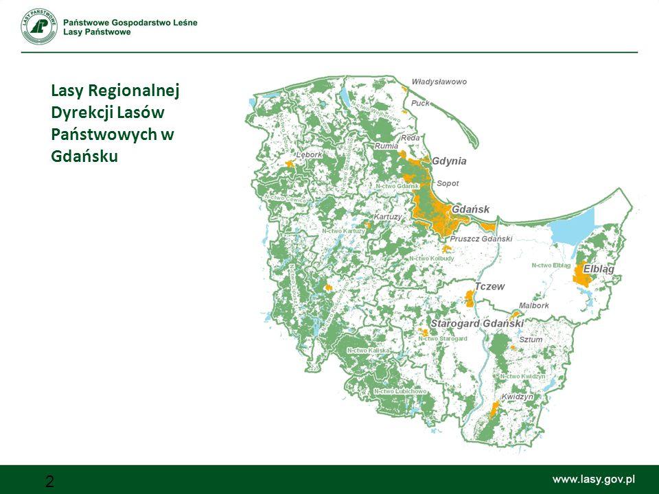 Lasy Regionalnej Dyrekcji Lasów Państwowych w Gdańsku