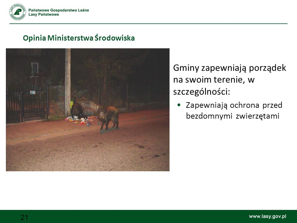 Opinia Ministerstwa Środowiska