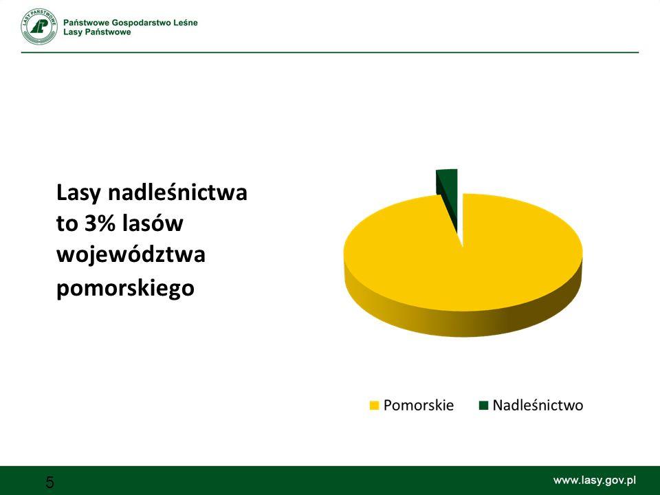 Lasy nadleśnictwa to 3% lasów województwa pomorskiego