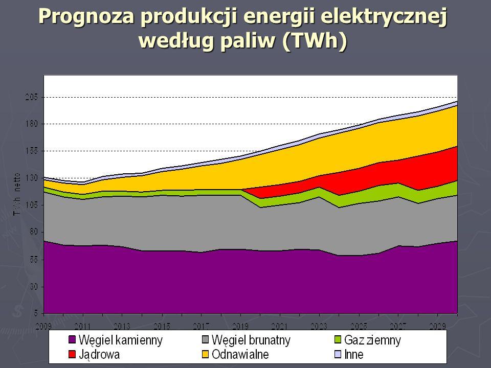 Prognoza produkcji energii elektrycznej według paliw (TWh)