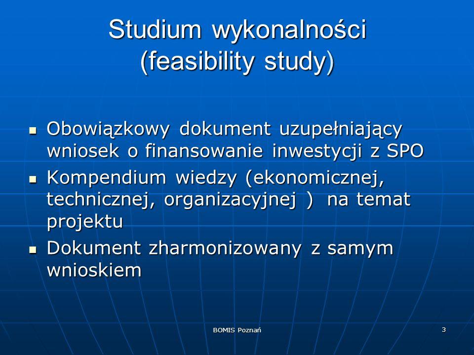 Studium wykonalności (feasibility study)