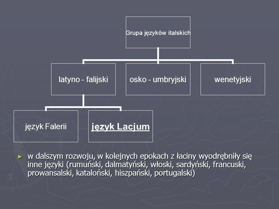 w dalszym rozwoju, w kolejnych epokach z łaciny wyodrębniły się inne języki (rumuński, dalmatyński, włoski, sardyński, francuski, prowansalski, kataloński, hiszpański, portugalski)