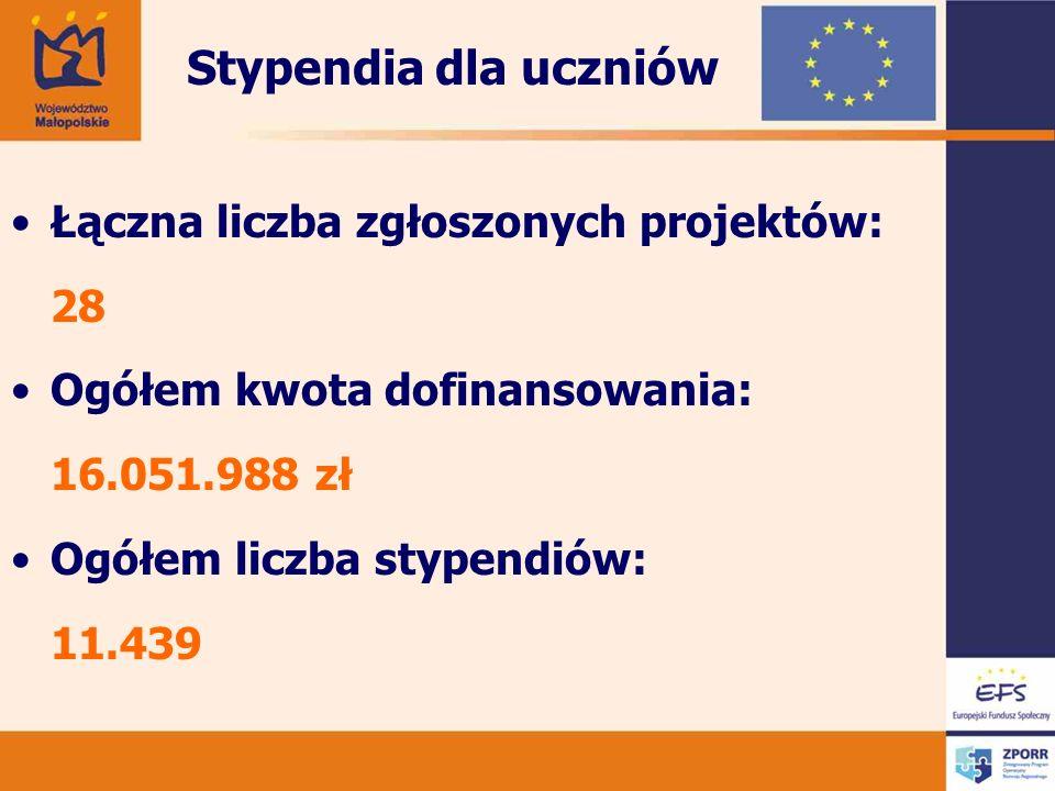 Stypendia dla uczniów Łączna liczba zgłoszonych projektów: 28