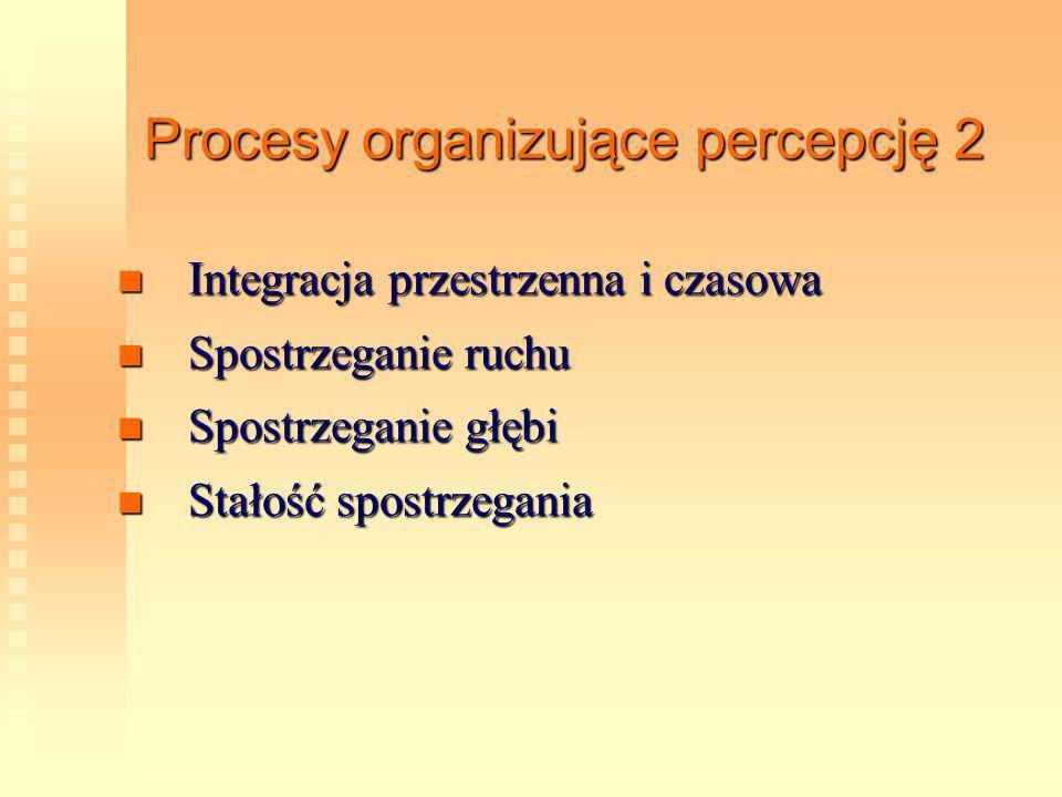 Procesy organizujące percepcję 2