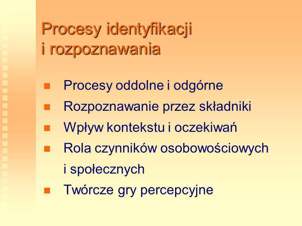 Procesy identyfikacji i rozpoznawania