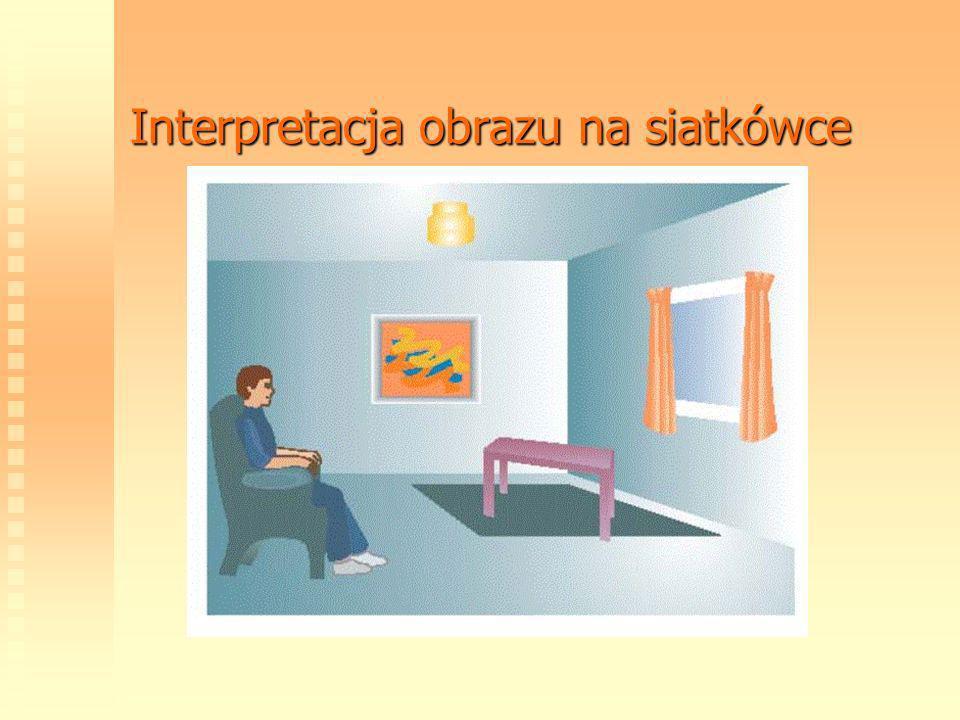 Interpretacja obrazu na siatkówce