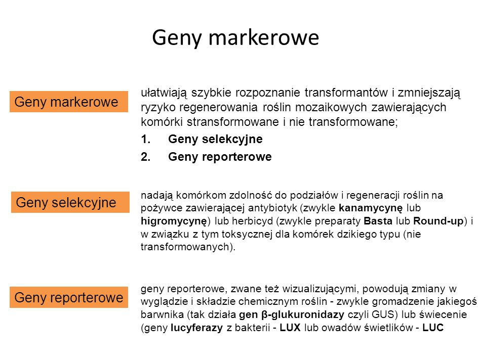 Geny markerowe Geny markerowe Geny selekcyjne Geny reporterowe