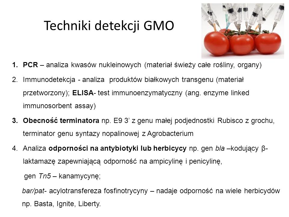Techniki detekcji GMO PCR – analiza kwasów nukleinowych (materiał świeży całe rośliny, organy)