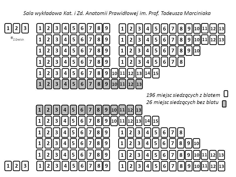196 miejsc siedzących z blatem 26 miejsc siedzących bez blatu
