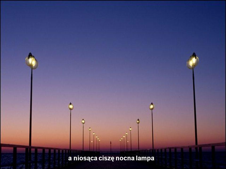 a niosąca ciszę nocna lampa