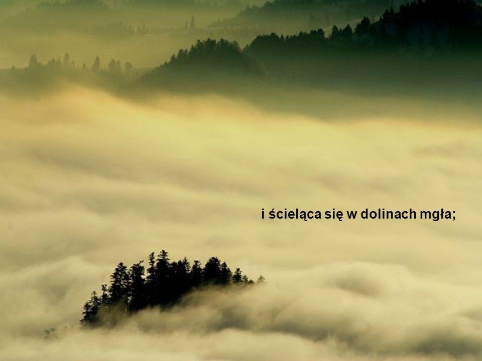 i ścieląca się w dolinach mgła;