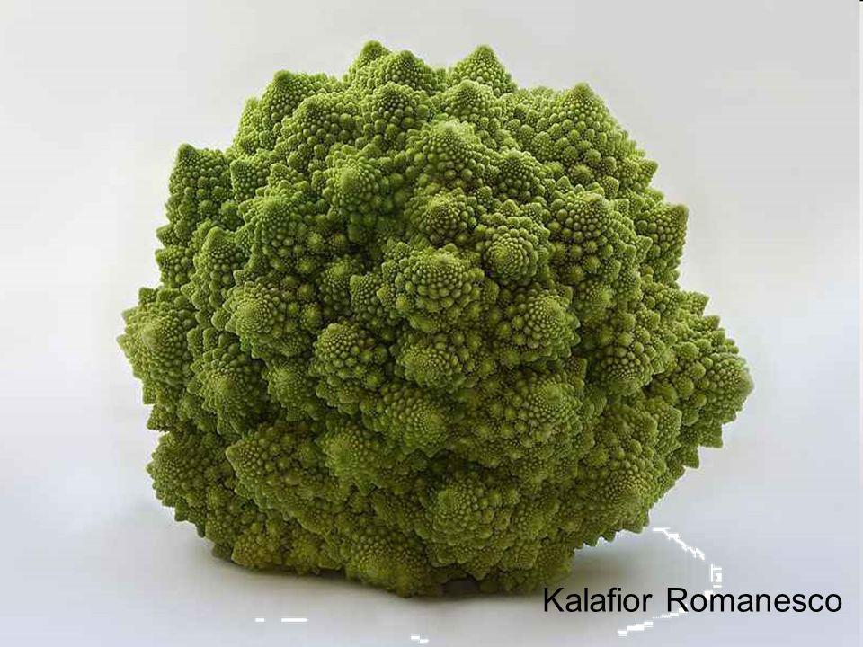 Kalafior Romanesco