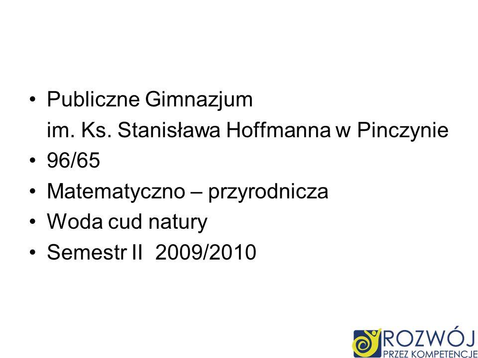 Publiczne Gimnazjum im. Ks. Stanisława Hoffmanna w Pinczynie. 96/65. Matematyczno – przyrodnicza.