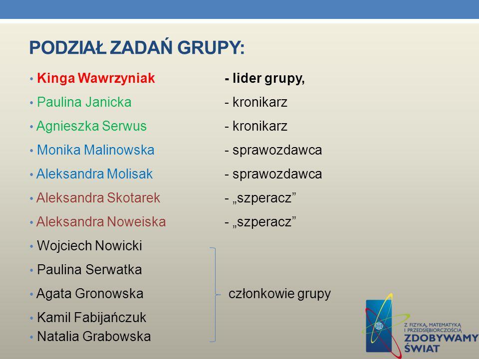 Podział zadań grupy: Kinga Wawrzyniak - lider grupy,