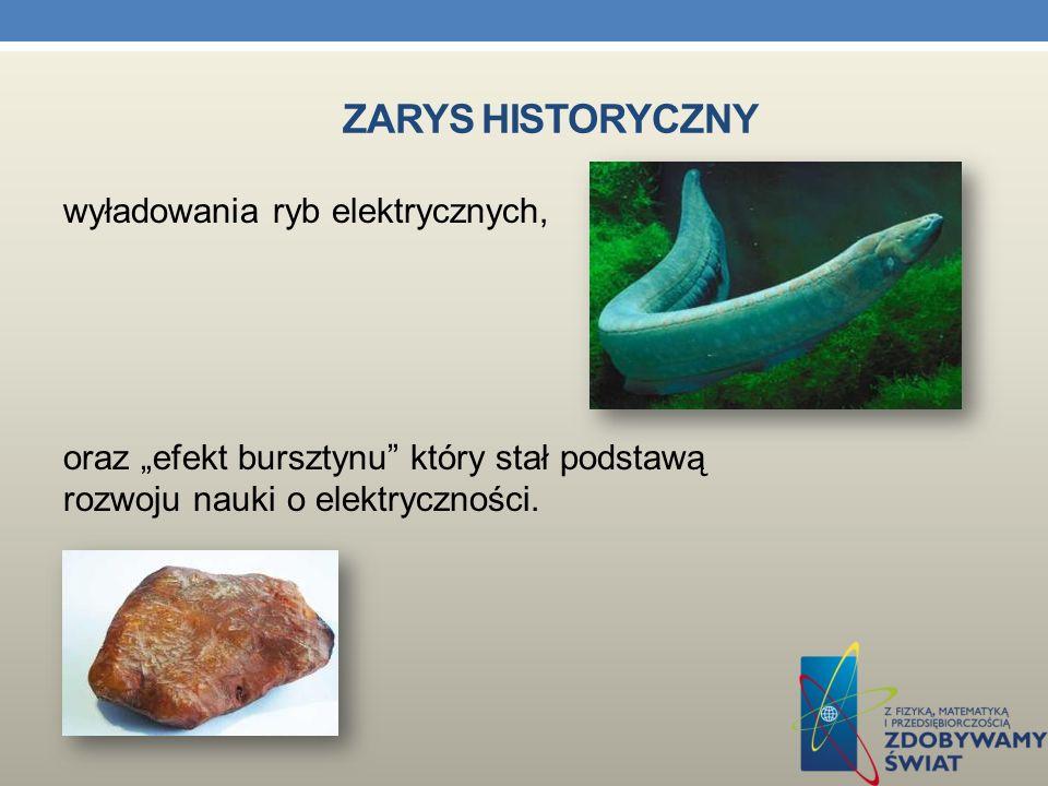 """Zarys historyczny wyładowania ryb elektrycznych, oraz """"efekt bursztynu który stał podstawą rozwoju nauki o elektryczności."""