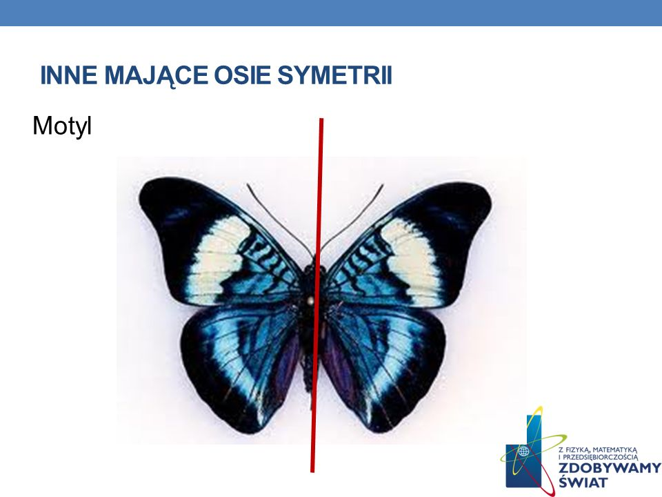 Inne mające osie symetrii