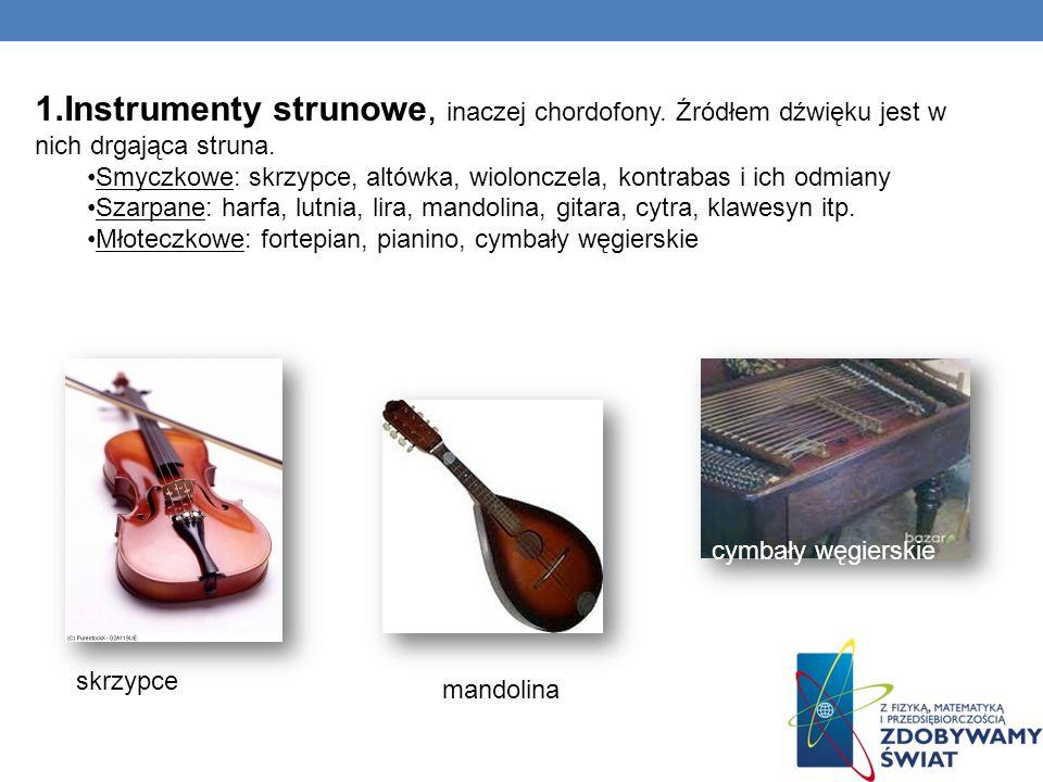 Instrumenty strunowe, inaczej chordofony