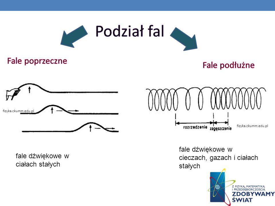 Podział fal Fale poprzeczne Fale podłużne