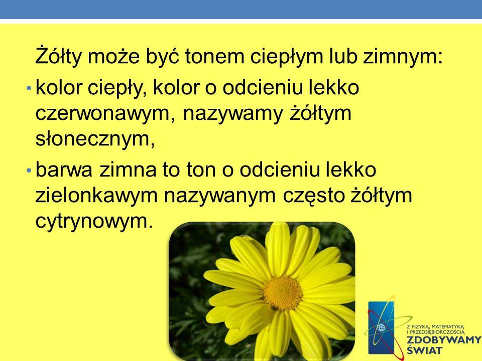 Żółty może być tonem ciepłym lub zimnym: