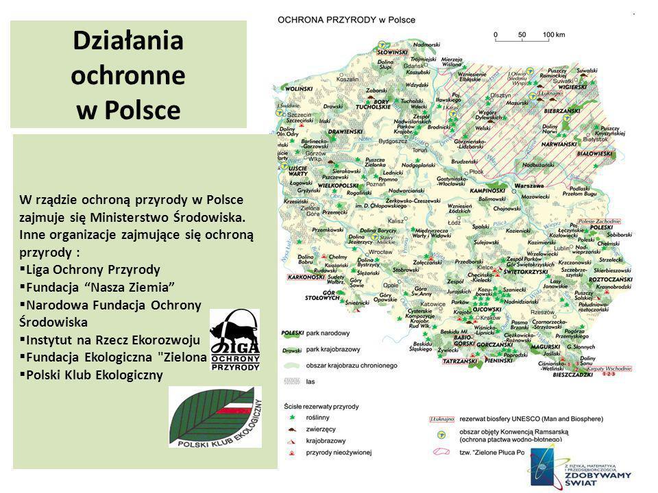 Działania ochronne w Polsce