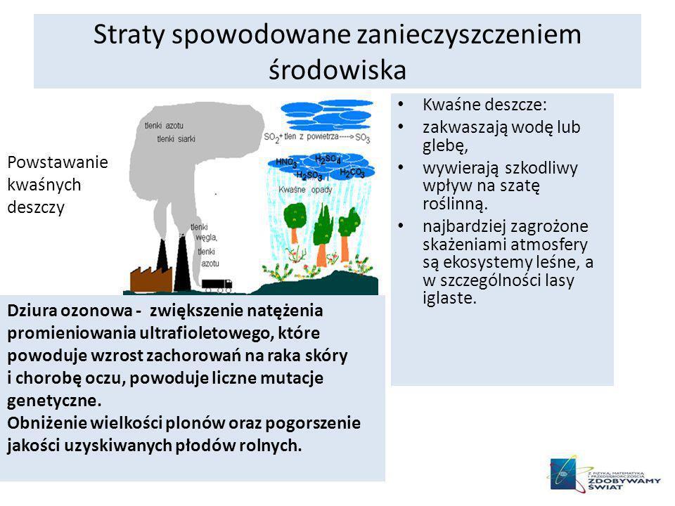 Straty spowodowane zanieczyszczeniem środowiska