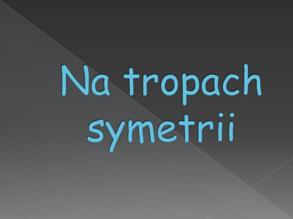 Na tropach symetrii